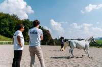 Tačka,veterina, trgovina - delo na prostem s konji
