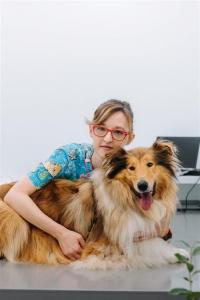 Tačka, veterina, trgovina, bolnica - kuža v pregledu